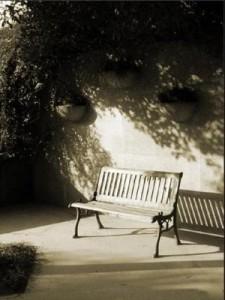 每个人心中的公园都有一把空着的长椅